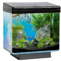 Juwel Fish Tanks